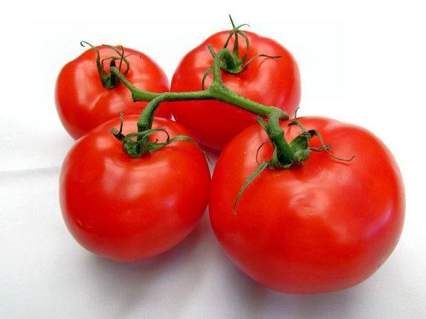 помидор2